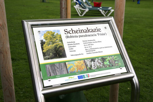 Schilder vermitteln die wichtigsten Fakten zu den einzelnen Baumarten. Fotos: Christian Melzer