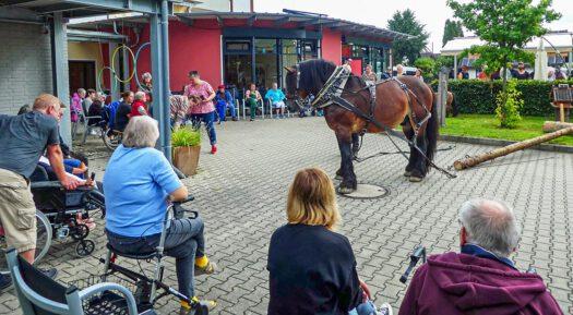 Hengst Nalu begeisterte die Zuschauer im Haus Am Konradsberg. Fotos: HBW/F. Jansen